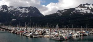 things to do in seward