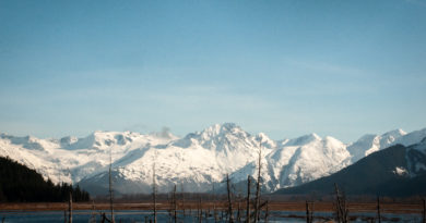 Turnagain Arm: The Best Place in Alaska to Kill Some Time